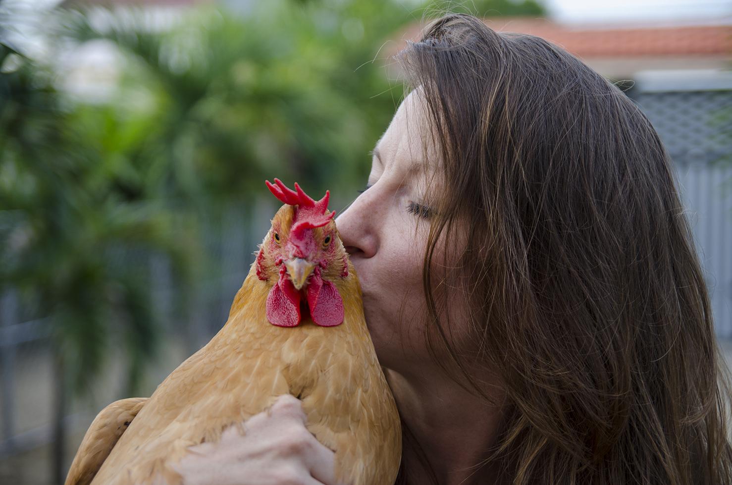 vietnam animal aid catherine besch